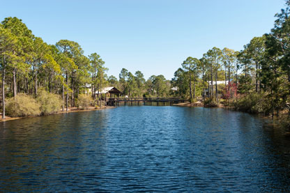 Forest Lakes Homes for Sale